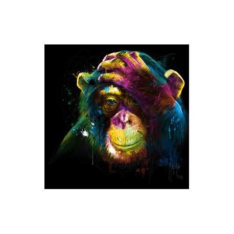 Monkey Darwin By Murciano