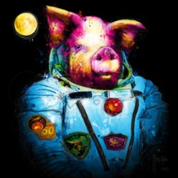 First Pig In Space By Murciano