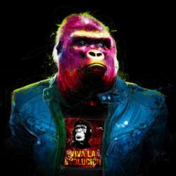 Rock N' Kong By Murciano