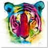 Tiger Pop By Murciano