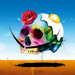 Dali Skull By Murciano