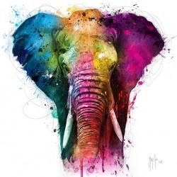 Elephant By Murciano