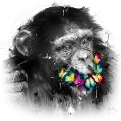singe de la sagesse 2