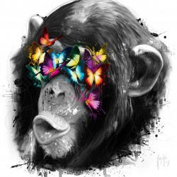 singe de la sagesse 3
