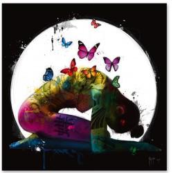 Butterfly Dreams By Murciano